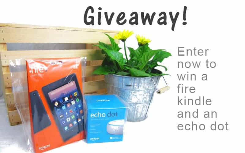 Give away fire kindle and echo dot