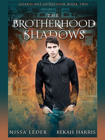 The Brotherhood of Shadows Book 2